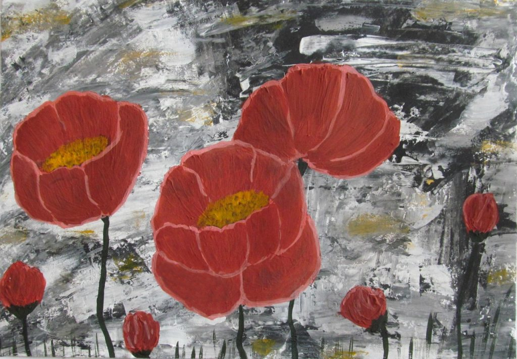Poppies in the rocks